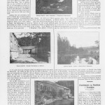 Dagsposten 14. januar 1905.